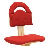 SVAN Cushion Red